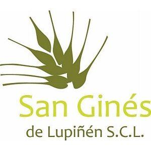 San Ginés de Lupiñén