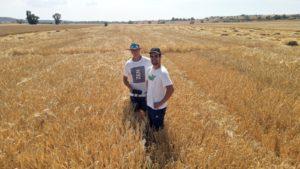 Miguel Gutiérrez y Andrés Jiménez en campo de ensayos de Cooperativa San José de Sádaba